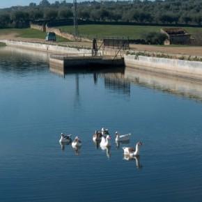 La presa renacentista del Casar de Cáceres